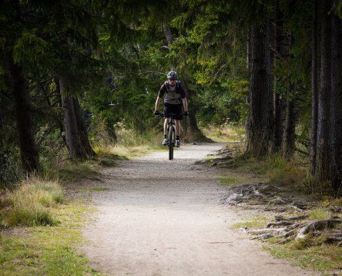 mountain biking Fichtel Mountains Dustin riding in the woods