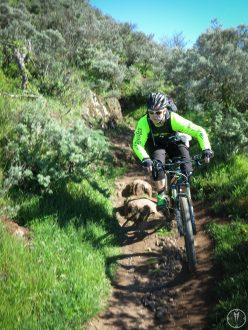 picture of Daniel riding a singletrack