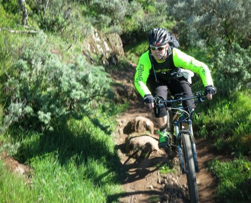mountain biking Gran Canaria Daniel riding a singletrack