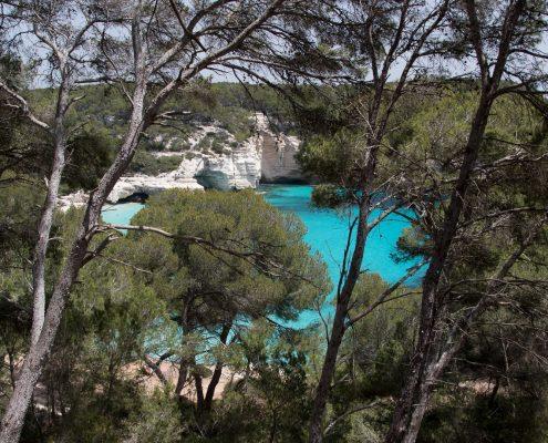 mountain biking Menorca peeking through the pines