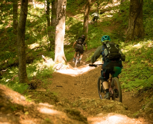 enduro mountain biking Transylvania